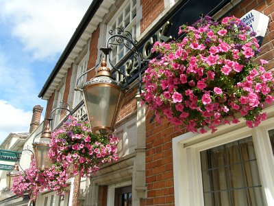 Photo of hanging baskets outside The Woolpack public house